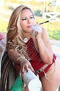 Escort Belluno Carolina Lins 327.4922255 foto 2