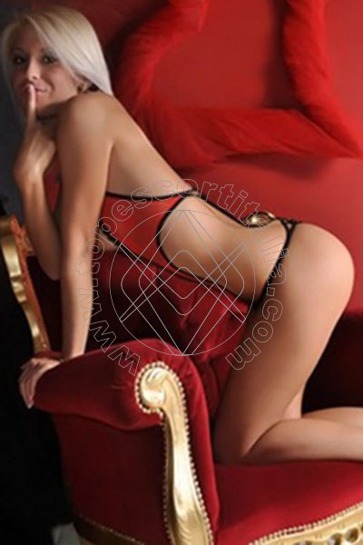 Annunci gay in torino video top escort