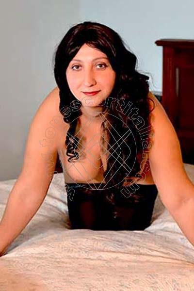 Rosa Spagnola ALTOPASCIO 3348821506
